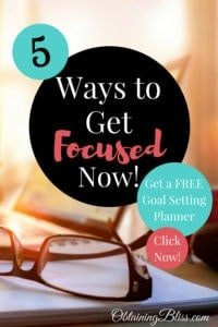 Those darn squirrels can be so distracting! You need to learn these 5 ways to get focused now to be able to ignore those nut crazy critters! Plus get a free Goal Setting Workbook! #focus #personaldevelopment #personalgrowth #distractions #mentalhealth #mentaldevelopment #selfcare #success #focustosucceed